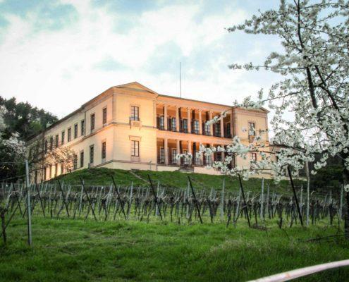 Villa Ludwigshöhe, (c) GDKE, Foto: BSA Spiess