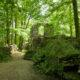 Kloster Altzella, Abtei, www.schloesserland-sachsen.de, Copyright © Sylvio Dittrich +49 1772156417)