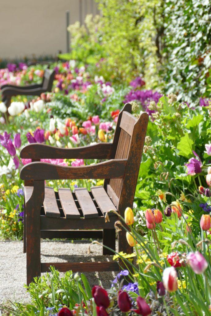 Kräutergarten mit Blumen in Schloss Weikersheim, (c) SSG, Foto: Sonja Wünsch