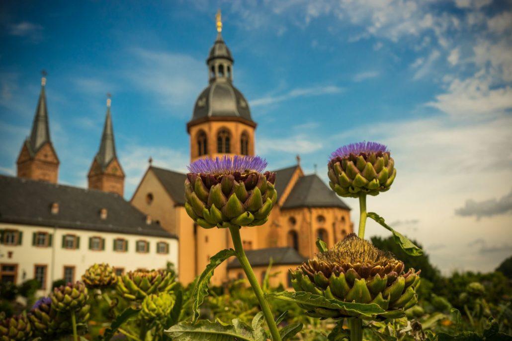 Kräutergarten in Kloster Seligenstadt, (c) VSG, Foto: Oliver Heimann